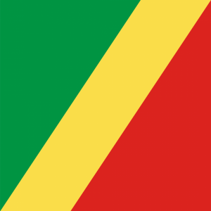 Republic of the Congo flag profile picture overlay