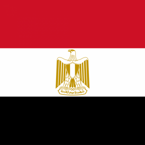 Egypt flag profile picture overlay