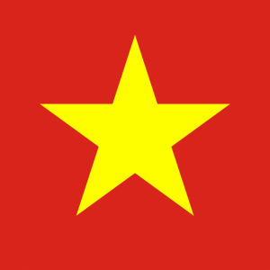 Vietnam flag profile picture overlay