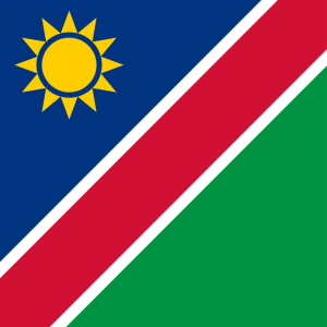 Namibia flag profile picture overlay