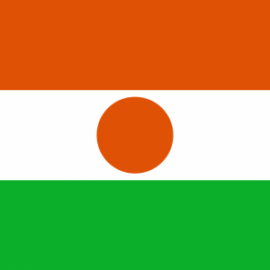 Niger flag profile picture overlay