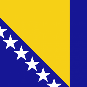 Bosnia and Herzegovina flag profile picture overlay