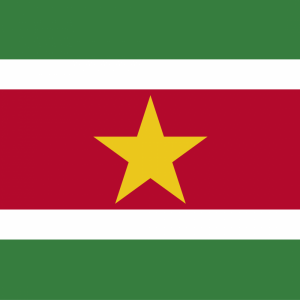 Suriname flag profile picture overlay