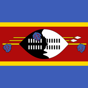Swaziland flag profile picture overlay