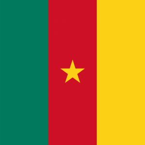 Cameroon flag profile picture overlay