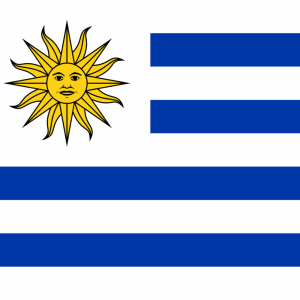 Uruguay flag profile picture overlay
