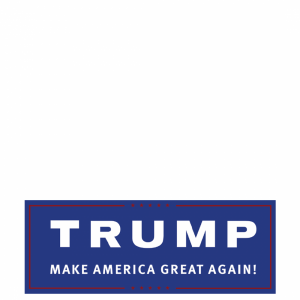 I support Donald Trump's Lets Make America Great Again campaign