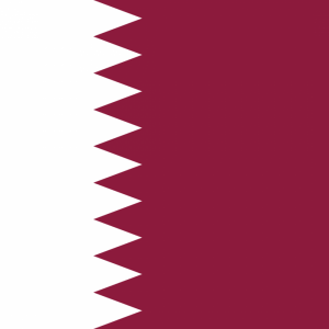Qatar flag profile picture overlay