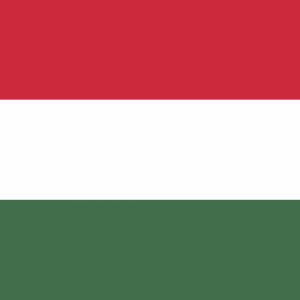 Hungary flag profile picture overlay